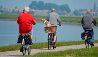 Síntomas de la insuficiencia cardíaca en ancianos